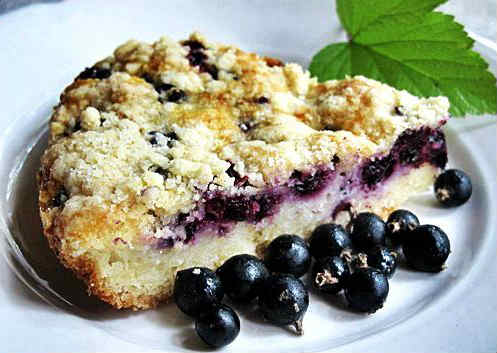 Blackcurrant cake- recipe and photo
